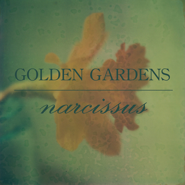 NS010 : GOLDEN GARDENS - NARCISSUS